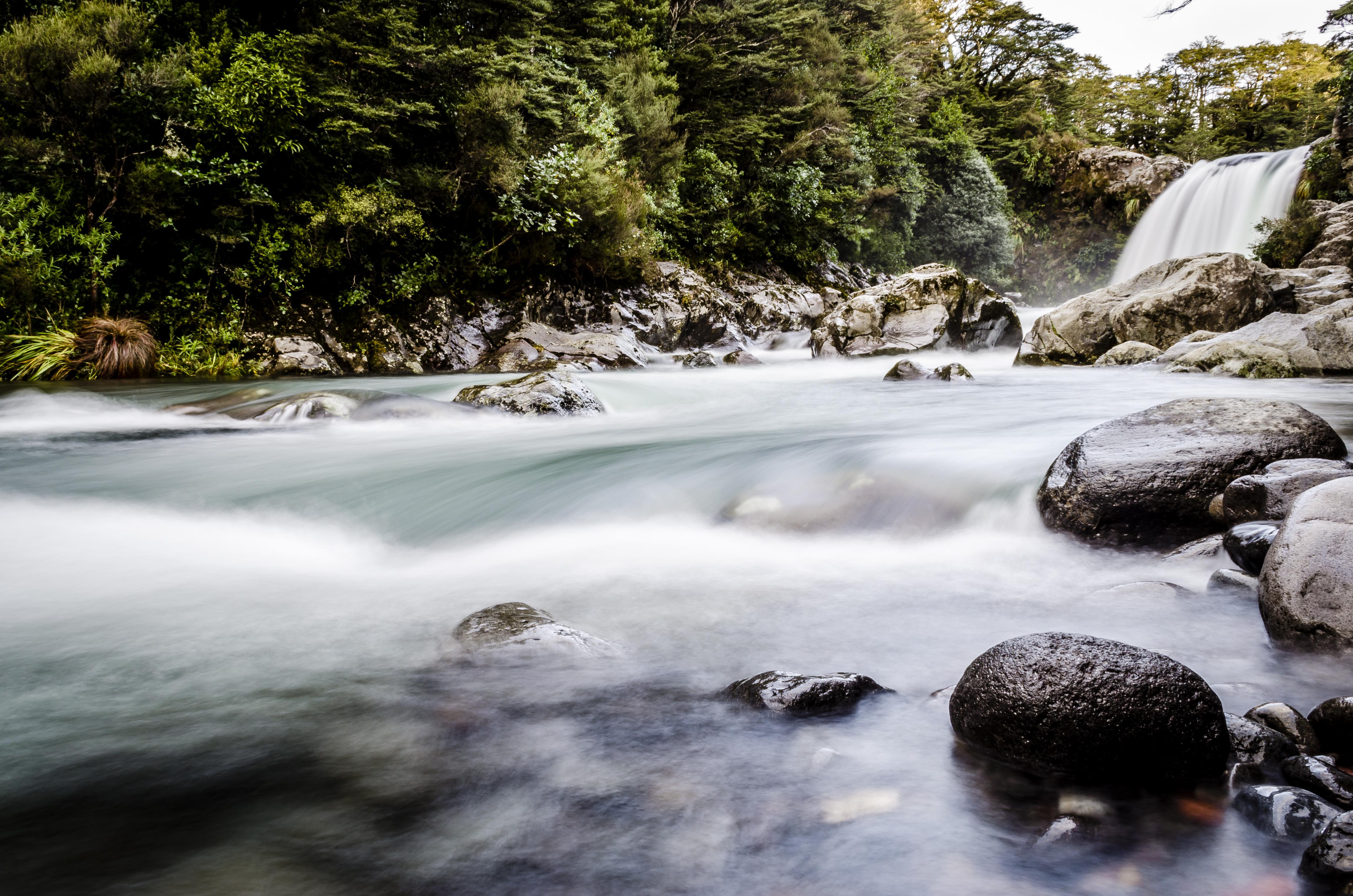 Tawhai Falls (by Pedro)